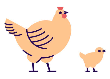 Orange hen with chick flat vector illustration. Domestic bird breeding concept. Chicken mother isolated design element with outline. Poultry farming, hennery symbol on white background Archivio Fotografico - 129945647