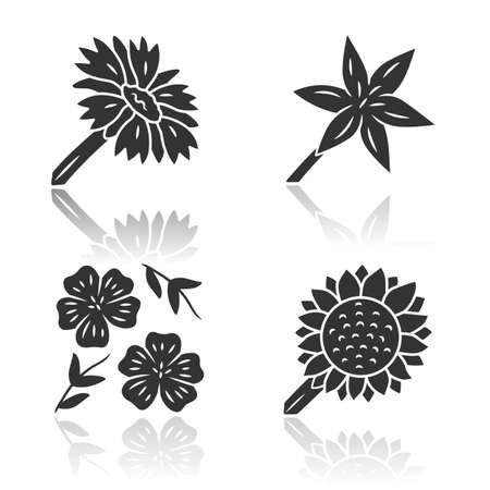 Wild flowers drop shadow black glyph icons set. Common star lily, blue flax, helianthus, blanket flower. Blooming wildflowers. Field, meadow herbaceous plants, weed. Isolated vector illustrations