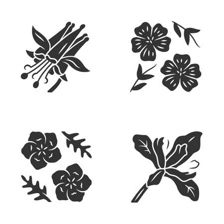 Wild flowers glyph icons set. Crimson columbine, linum, baby blue eyes, douglas iris. Blooming wildflowers, weed. Spring blossom. Field plants. Silhouette symbols. Vector isolated illustration