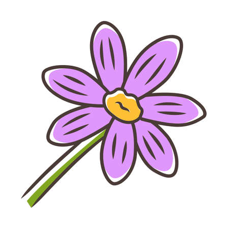 Coreopsis purple color icon. Rudbeckia garden flower. Calliopsis plant. Blooming daisy, camomile wildflower. Isolated vector illustration