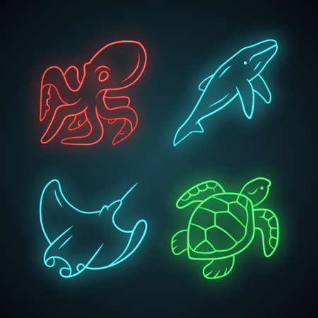 Underwater world neon light icons set. Swimming octopus, squid, turtle, whale. Ocean animals, undersea wildlife. Marine fauna. Aquatic creatures. Glowing signs. Vector isolated illustrations Illustration