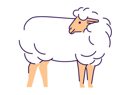 White sheep side view flat vector illustration. Livestock farming, domestic animal breeding, husbandry design element with outline. Merino ewe isolated on white background. Sheep wool production logo