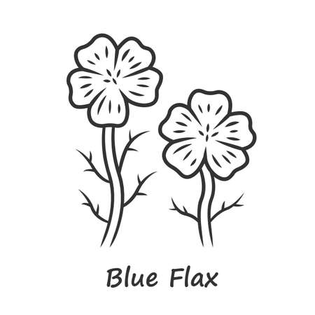 Blue flax plant linear icon. Thin line illustration. Linen wild flower with name inscription. Spring blossom. Blooming linum wildflower inflorescence. Contour symbol. Vector isolated outline drawing Ilustração