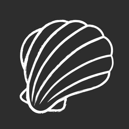 Sea shell chalk icon. Marine mollusk shell. Protective layer for animal living. Beach scallop. Tropical souvenir. Aquarium creature. Underwater fauna. Isolated vector chalkboard illustration