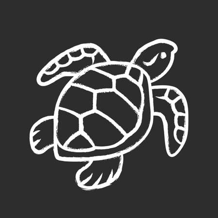 Turtle chalk icon. Slow moving reptile with scaly shell. Underwater aquatic animal. Swimming ocean creature. Oceanography and zoology. Marine fauna. Isolated vector chalkboard illustration