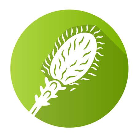 Liatris green flat design long shadow glyph icon. Blazing star blooming flower. Dwarf gayfeather garden plant. Spicata kobold. Wildflower. Spring blossom. Vector silhouette illustration