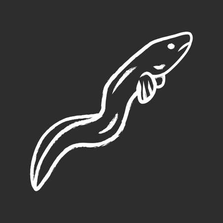 Eel chalk icon. Floating snakelike fish. Sea underwater animal with smooth skin. Asian seafood, sushi ingredient. Snake shape creature swimming in ocean. Isolated vector chalkboard illustration