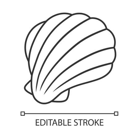 Sea shell linear icon. Mollusk shell. Protective layer for animal living. Tropical souvenir. Aquarium creature. Thin line illustration. Contour symbol. Vector isolated outline drawing. Editable stroke