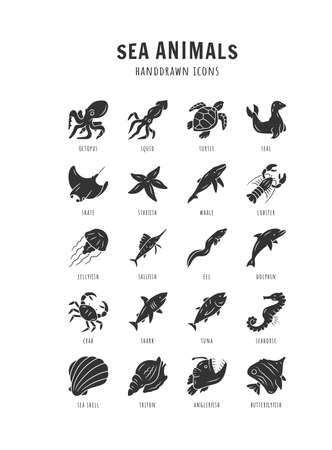 Sea animals glyph icons set. Starfish, butterflyfish, seal. Ocean wildlife. Aquatic tropical fish species. Undersea world. Oceanography and zoology. Silhouette symbols. Vector isolated illustration