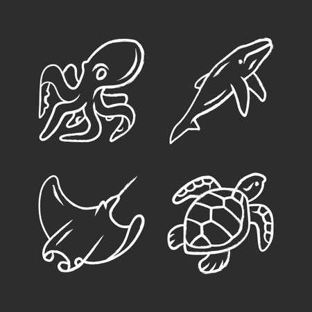 Underwater world chalk icons set. Swimming octopus, squid, turtle, whale. Ocean animals, undersea wildlife. Marine fauna. Aquatic creatures. Water organism. Isolated vector chalkboard illustrations Illustration