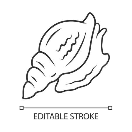 Triton linear icon. Large mollusk with spiral shell. Tropical seashell. Underwater inhabitant. Marine creature. Thin line illustration. Contour symbol. Vector isolated outline drawing. Editable stroke