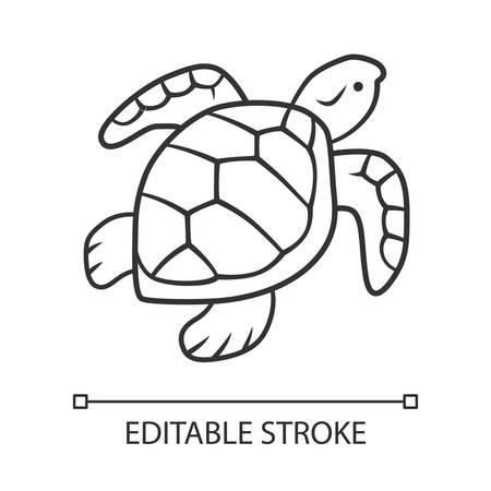 Turtle linear icon. Slow moving reptile with scaly shell. Aquatic animal. Swimming creature. Marine fauna. Thin line illustration. Contour symbol. Vector isolated outline drawing. Editable stroke