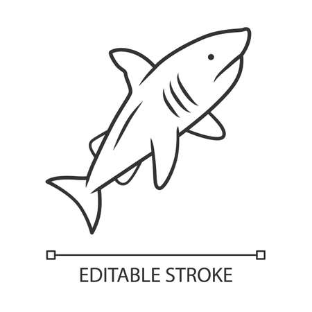 Shark linear icon. Dangerous ocean predator. Swimming fish. Underwater animal, ocean wildlife. Marine fauna. Thin line illustration. Contour symbol. Vector isolated outline drawing. Editable stroke
