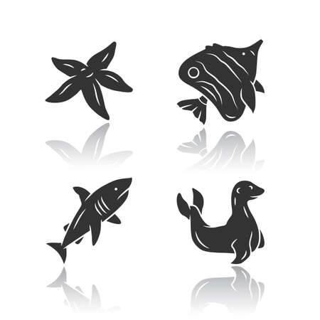 Sea animals drop shadow black glyph icons set. Starfish, butterflyfish, seal. Ocean wildlife. Aquatic tropical fish species. Undersea world. Oceanography and zoology. Isolated vector illustrations