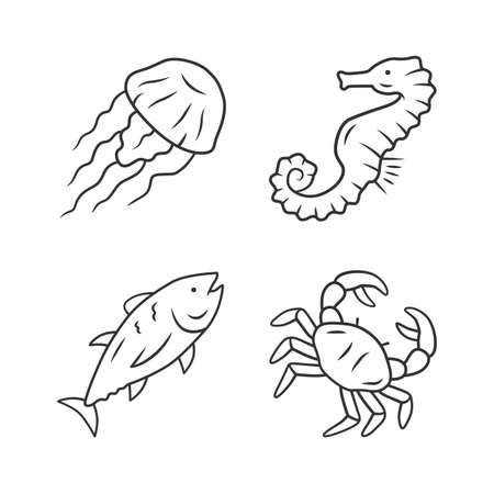 Sea animals linear icons set. Swimming tuna, crab, jellyfish. Seafood restaurant. Marine fauna. Undersea inhabitants. Thin line contour symbols. Isolated vector outline illustrations. Editable stroke