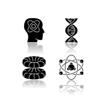 Physics branches drop shadow black glyph icons set. Neurophysics, biophysics, quantum and nuclear physics. Nuclear matter and power research. Neuroscience. Isolated vector illustrations Ilustração
