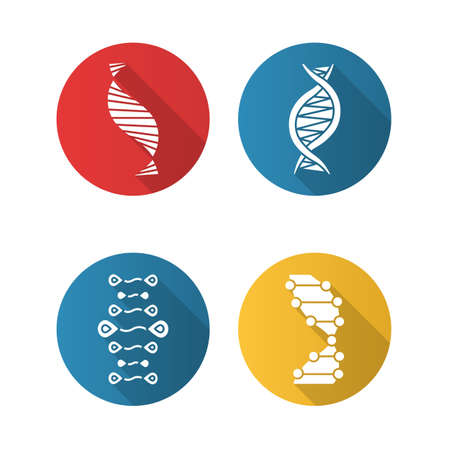 DNA strands flat design long shadow glyph icons set. Deoxyribonucleic, nucleic acid helix. Spiraling strands. Chromosome. Molecular biology. Genetic code. Genetics. Vector silhouette illustration