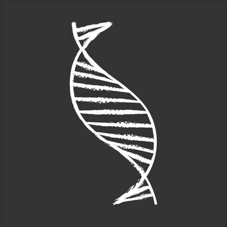 DNA spiral strand chalk icon. Deoxyribonucleic, nucleic acid helix stripes. Chromosome. Molecular biology. Genetic code. Genome. Genetics. Medicine. Isolated vector chalkboard illustration Иллюстрация