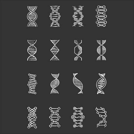 DNA helix chalk icons set. Deoxyribonucleic, nucleic acid structure. Spiraling strand. Chromosome. Molecular biology. Genetic code. Genome. Genetics. Medicine. Isolated vector chalkboard illustrations