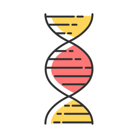 DNA double helix color icon. Deoxyribonucleic, nucleic acid structure. Spiraling strands. Chromosome. Molecular biology. Genetic code. Genome. Genetics. Isolated vector illustration