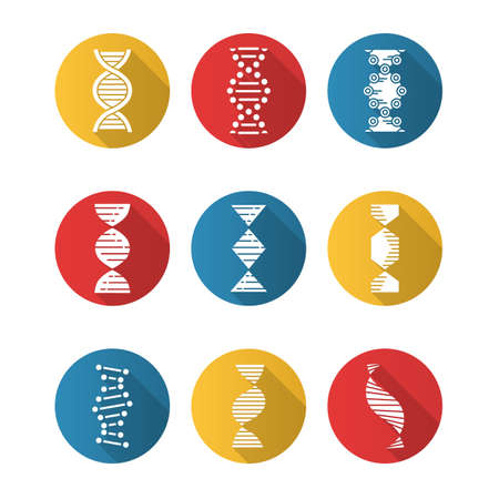 DNA spirals flat design long shadow glyph icons set. Deoxyribonucleic, nucleic acid helix. Spiraling strands. Chromosome. Molecular biology. Genetic code. Genetics. Vector silhouette illustration