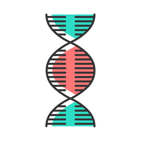 DNA spiral color icon. Deoxyribonucleic, nucleic acid helix. Spiraling strands. Chromosome. Molecular biology. Genetic code. Genome. Genetics. Medicine. Isolated vector illustration