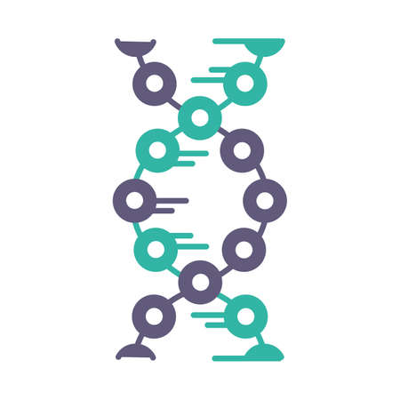 DNA strands violet and turquoise color icon. Connected circles, lines. Deoxyribonucleic, nucleic acid helix. Chromosome. Molecular biology. Genetic code. Genome. Genetics. Isolated vector illustration