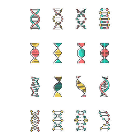 DNA helix color icons set. Deoxyribonucleic, nucleic acid structure. Spiraling strands. Chromosome. Molecular biology. Genetic code. Genome. Genetics. Medicine. Isolated vector illustrations