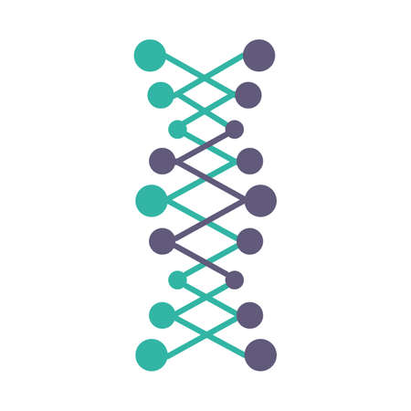 DNA double helix violet and turquoise color icon. Connected dots, lines. Deoxyribonucleic, nucleic acid structure. Chromosome. Molecular biology. Genetic code. Genetics. Isolated vector illustration