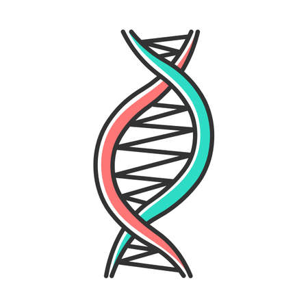 Left-handed DNA helix color icon. Z-DNA. Deoxyribonucleic, nucleic acid structure. Spiral strands. Chromosome. Molecular biology. Genetic code. Genome. Genetics. Isolated vector illustration