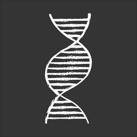 Right-handed DNA helix chalk icon. B-DNA. Deoxyribonucleic, nucleic acid. Spiral strand. Chromosome. Molecular biology. Genetic code. Genome. Genetics. Isolated vector chalkboard illustration 向量圖像