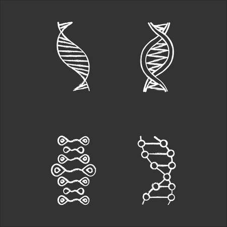 DNA strands chalk icons set. Deoxyribonucleic, nucleic acid helix. Spiraling strands. Chromosome. Molecular biology. Genetic code. Genome. Genetics. Medicine. Isolated vector chalkboard illustrations 일러스트