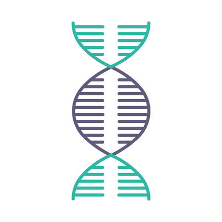 DNA spiral violet and turquoise color icon. Deoxyribonucleic, nucleic acid helix. Spiraling strands. Chromosome. Molecular biology. Genetic code. Genome. Genetics. Isolated vector illustration