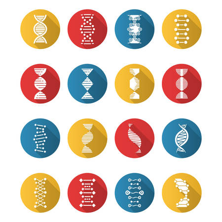 DNA helix flat design long shadow glyph icons set. Deoxyribonucleic, nucleic acid structure. Spiraling strands. Chromosome. Molecular biology. Genetic code. Genetics. Vector silhouette illustration