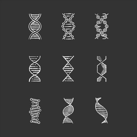 DNA spirals chalk icons set. Deoxyribonucleic, nucleic acid helix. Spiraling strands. Chromosome. Molecular biology. Genetic code. Genome. Genetics. Medicine. Isolated vector chalkboard illustrations
