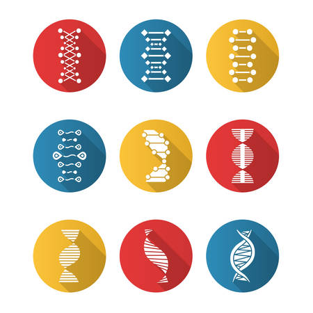 DNA double helix flat design long shadow glyph icons set. Deoxyribonucleic, nucleic acid. Spiraling strands. Chromosome. Molecular biology. Genetic code. Genetics. Vector silhouette illustration