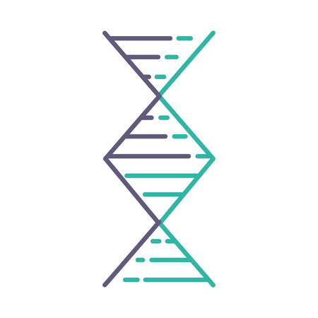 Diamond-shaped DNA helix violet and turquoise color icon. Deoxyribonucleic, nucleic acid structure. Spiraling strand. Chromosome. Molecular biology. Genetic code. Genome. Isolated vector illustration