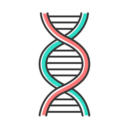 DNA helix color icon. Deoxyribonucleic, nucleic acid structure. Spiraling strands. Chromosome. Molecular biology. Genetic code. Genome. Genetics. Medicine. Isolated vector illustration