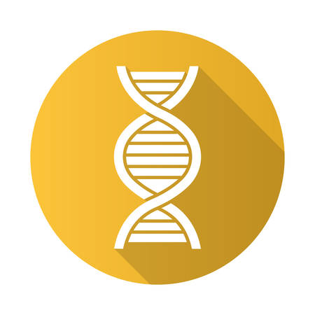 DNA helix yellow flat design long shadow glyph icon. Deoxyribonucleic, nucleic acid. Spiraling strands. Chromosome. Molecular biology. Genetic code. Genome. Genetics. Vector silhouette illustration