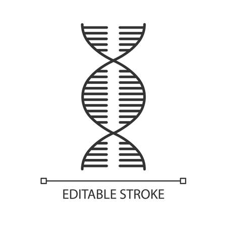 DNA spiral linear icon. Deoxyribonucleic, nucleic acid helix. Molecular biology. Genetic code. Genome. Thin line illustration. Contour symbol. Vector isolated outline drawing. Editable stroke Vettoriali
