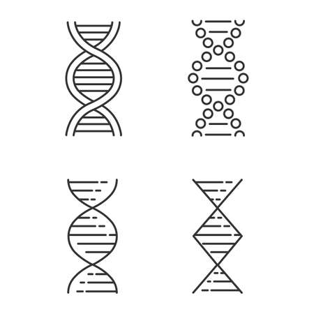 DNA spiral strands linear icons set. Deoxyribonucleic, nucleic acid helix. Molecular biology. Genetic code. Genetics. Thin line contour symbols. Isolated vector outline illustrations. Editable stroke