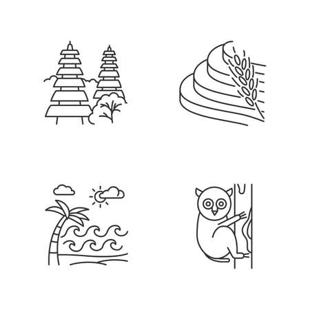 Indonesia linear icons set. Tropical country animals. Indonesian islands. Exploring exotic places. Thin line contour symbols. Isolated vector outline illustrations. Editable stroke. Perfect pixel