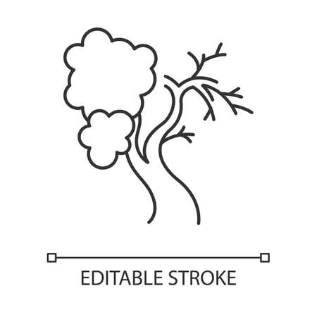 Fig tree linear icon. Old half dead tree. Healthy leaved part and dying part symbol. Biblical plant of life. Thin line illustration. Contour symbol. Vector isolated outline drawing. Editable stroke Фото со стока - 136796202
