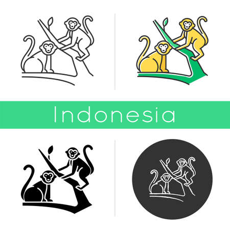 Monkeys in jungle icon. Tropical country animals, mammals. Exploring exotic Indonesia wildlife. Primates sitting. Linear, black, chalk and color styles. Isolated vector illustrations