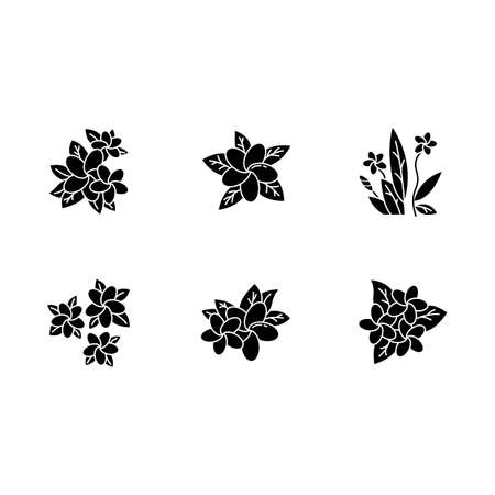 Plumeria glyph icons set. Exotic region flowers. Flora of Indonesian islands. Small tropical plants. Blossom of frangipani with leaves. Nature of Bali. Silhouette symbols. Vector isolated illustration