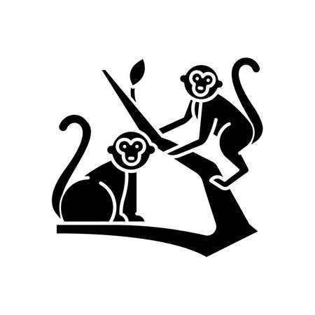 Monkeys in jungle glyph icon. Tropical country animals, mammals. Exploring exotic Indonesia wildlife. Primates sitting. Silhouette symbol. Negative space. Vector isolated illustration