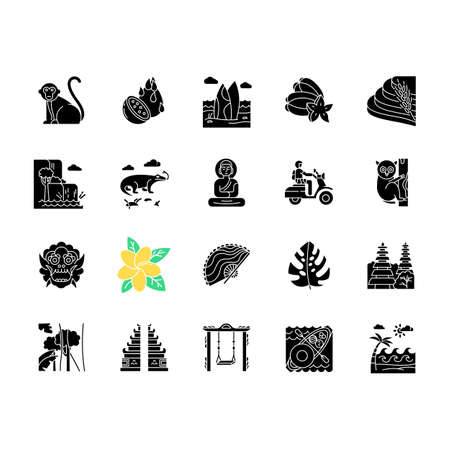 Indonesia glyph icons set. Tropical animals. Trip to Indonesian islands. Exotic culture. Unique fruits and plants. Nature and architecture wonders. Silhouette symbols. Vector isolated illustration Vektorové ilustrace
