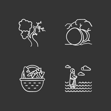 Bible narratives chalk icons set. Fig tree, open coffin, bread and fish, Jesus walking on water. Easter week. Christian miracles. Holy writ. Gospel studying. Isolated vector chalkboard illustrations