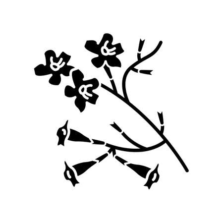 Plumeria black glyph icon. Ipe tree. Tropical blossom. Brazilian flower. South american plant. Exotic floret. Botany. Silhouette symbol on white space. Vector isolated illustration