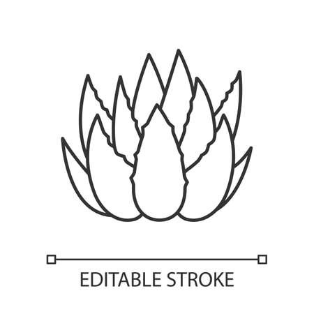 Cactus sprouts pixel perfect linear icon. Aloe vera leaves. Growing medicinal herb. Thin line customizable illustration. Contour symbol. Vector isolated outline drawing. Editable stroke